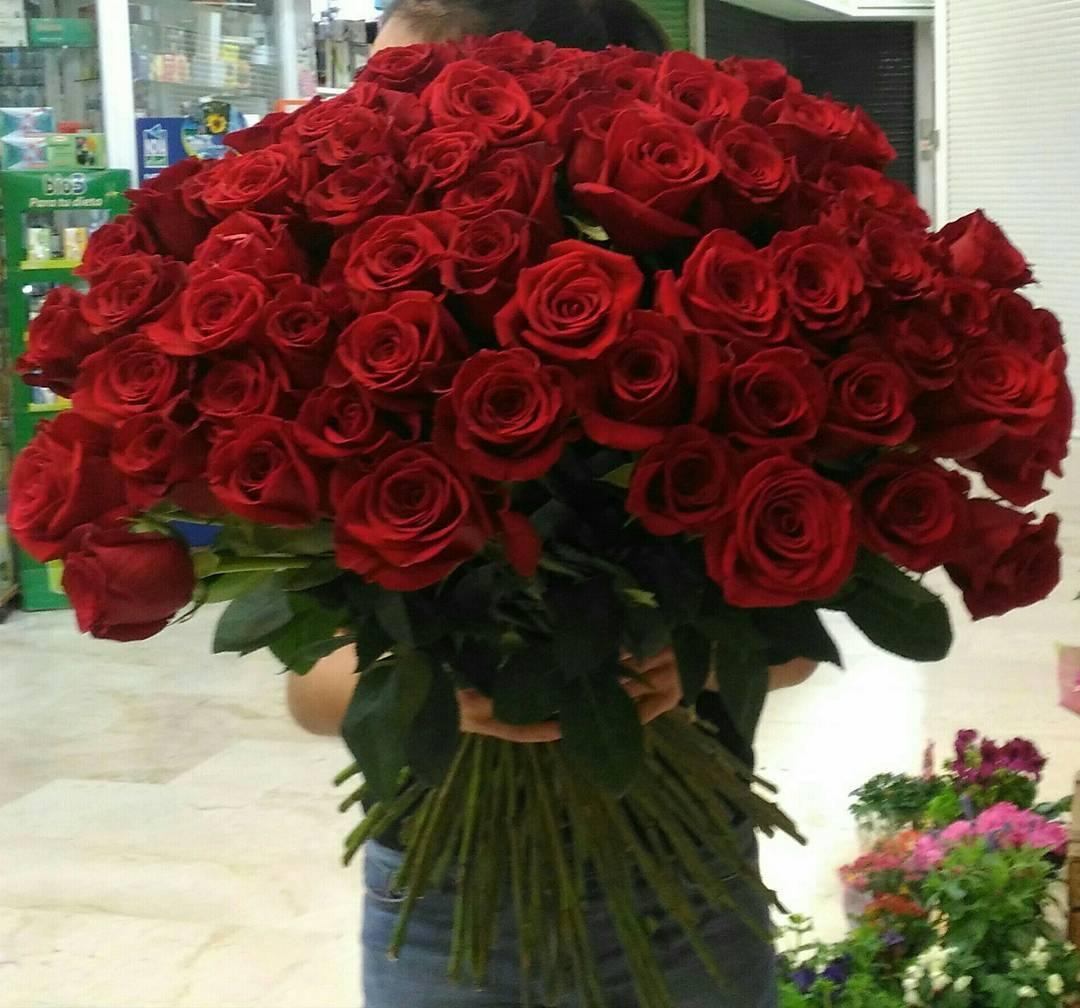 75 rosas